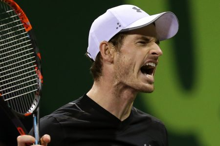 Murray hip surgery